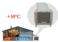 Охладители воздуха испарительного типа - эффективное средство для предварительного охлаждения овощей и фруктов.